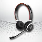 Kulaklık & Mikrofon (2)